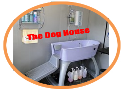 The interior of our Fully equiped dog grooming salon